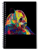 Panda Little Bear Australia Animal Color Designed Spiral Notebook