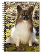 Papillon Sitting In Leaves Spiral Notebook