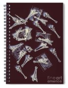 Paris Post Spiral Notebook