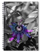 Passion Flower Only Spiral Notebook