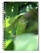 Patience Of Hope Spiral Notebook