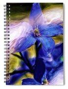 Peek A Blue Spiral Notebook