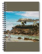 Pelicans At Laguna Beach 3 Spiral Notebook