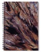 Petrified Wood Spiral Notebook