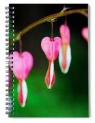 Phlebotomizing Coronary Spiral Notebook