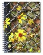 Phoenix Arizona Papago Park Blue Sky Red Rocks Scrub Vegetation Yellow Flowers 3182019 5327 Spiral Notebook