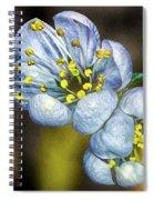 Photinia Spring Spiral Notebook