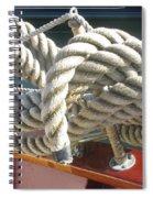 Photo #95 Spiral Notebook