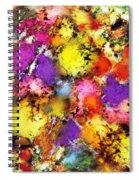 Pigment Noise Spiral Notebook