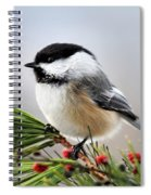 Pine Chickadee Spiral Notebook