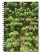 Pine Rows Aerial 2x1 Spiral Notebook
