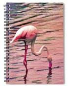 Pink Flamingo Two Spiral Notebook