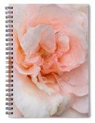 Pink Pedals Spiral Notebook