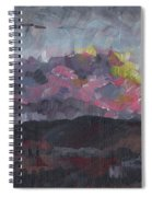 Pink Sky Delight Spiral Notebook