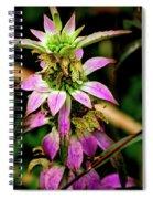 Pink Wildflower Spiral Notebook