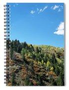 Plain Jane Spiral Notebook