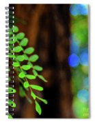 Plants, Trees And Flowers Spiral Notebook
