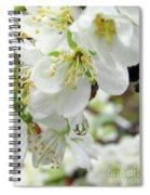 Plum Blossoms 2 Spiral Notebook