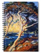 Point Lobos Trees 1919 Spiral Notebook