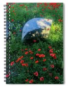 Poppies And Rocks Spiral Notebook