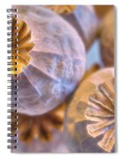 Poppy Seed Pods 2 Spiral Notebook