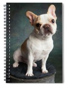 Portrait Of A French Bulldog Spiral Notebook