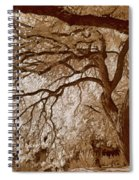 Portrait Of A Tree In Infrared Spiral Notebook