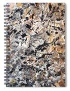 Prednisone Inferno Spiral Notebook