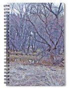 Prescott Arizona Watson Lake Bayou Trees Scrub Water Grasses 3142019 4916 Spiral Notebook