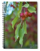 Pretty Cherries Hanging From Tree Spiral Notebook