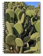Prickly Pear Cactus Spiral Notebook