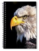 Profile Of Bald Eagle Spiral Notebook