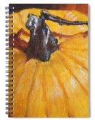 Pumpkin Delight Spiral Notebook