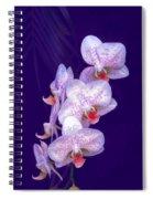 Purple Dream Spiral Notebook
