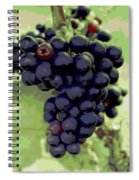 Purple Grape Bunches 19 Spiral Notebook