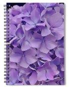Purple Hydrangea  Spiral Notebook