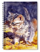 Pussy On A Yellow Blanket Spiral Notebook