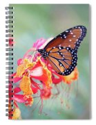 Queen Butterfly On Mexican Bird Of Paradise  Spiral Notebook