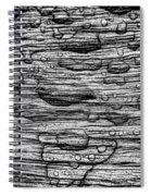 Raindrops On Wood, California, Usa Spiral Notebook