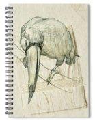 Ramphastidae Spiral Notebook