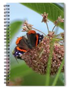 Red Admiral Butterfly On Milkweed Spiral Notebook