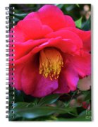 Red Camelia Spiral Notebook