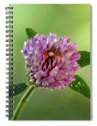 Red Clover Spiral Notebook