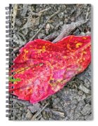Red Leaf On Green's Hill Spiral Notebook