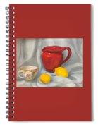 Red Pitcher Spiral Notebook