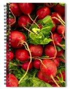 Red Radishes Spiral Notebook