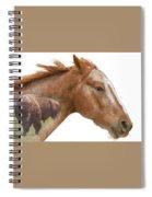 Red Rider Spiral Notebook