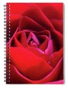 Red Rose 3 Spiral Notebook