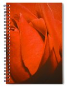 Red Rose Special Spiral Notebook