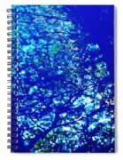 Reflection On A Blue Automobile 3 Spiral Notebook